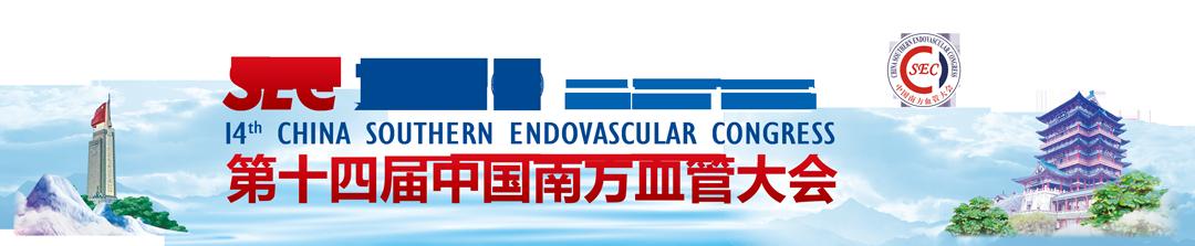 SEC2020第十四届中国南方血管大会